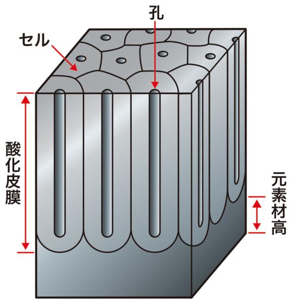 酸化被膜とは?
